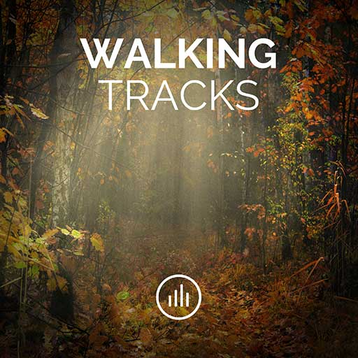 Autumn Walk • Relaxing Nature Sounds Wandering Ambience